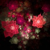  Red And Pink Fractal Roses